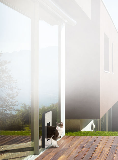 Isolierte Katzentüre / Katzenklappe von petWALK