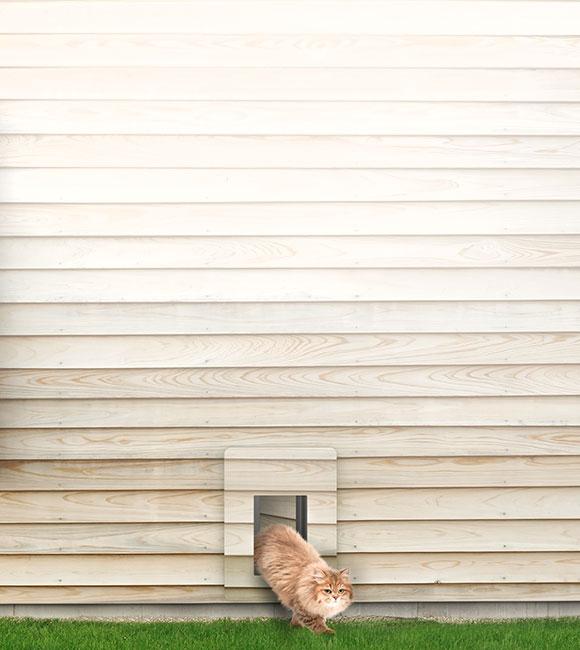 petWALK Katzentüre / Katzenklappe für Einbau in Wand, Glas, Türe, Isolierglas.